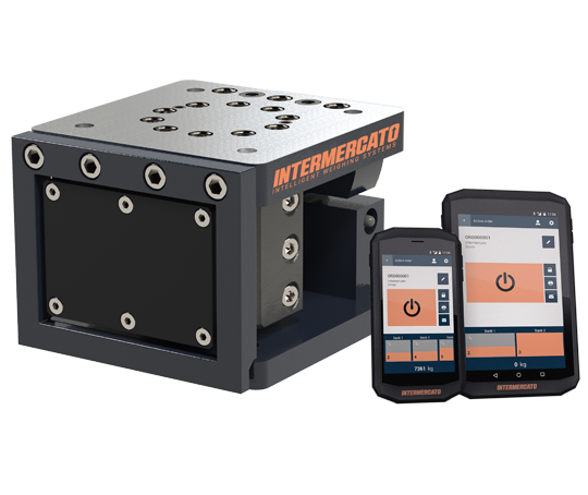 Intermercato Intelligent Weighing Systems 50 F