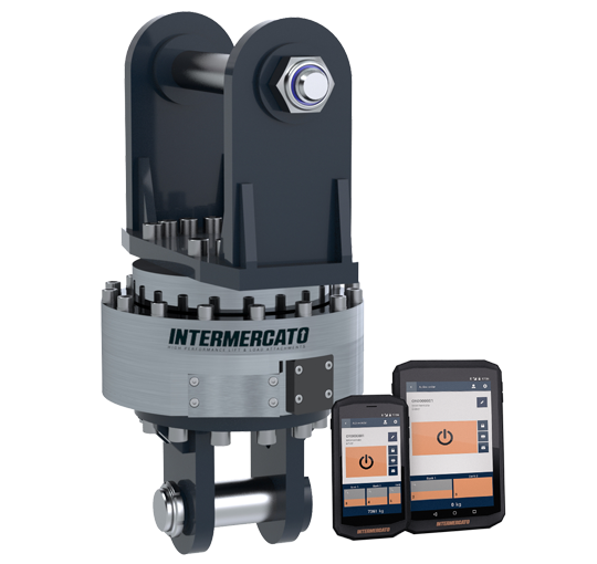 Intermercato Intelligent Weighing Systems Compact MH crane scale